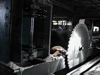 Jarvis Sawmill Inc - logger,logs,timber,crosshaul,sawmill,gangsaw